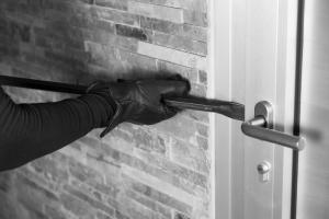 window-thief