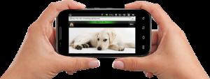 digital_video_security2